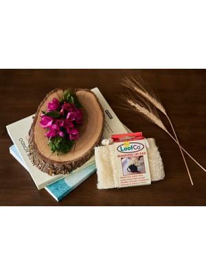 LOOFCO: Esponja vegetal de luffa para PLATOS (Pack de 2)