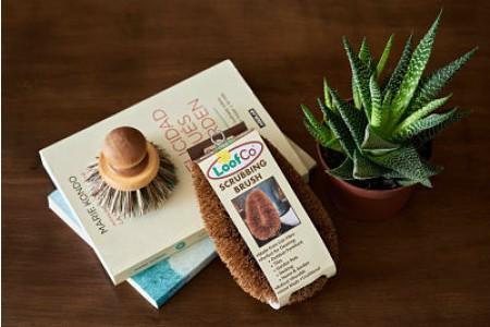 LOOFCO: Cepillo de coco grande