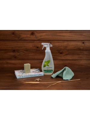 ECO-MAX: Window & Glass Cleaner Natural Spearmint (Limpiador para espejos y cristales MENTA) 710ml