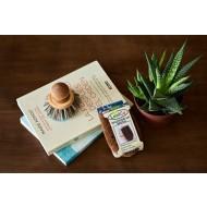 LOOFCO: Cepillo de coco pequeño